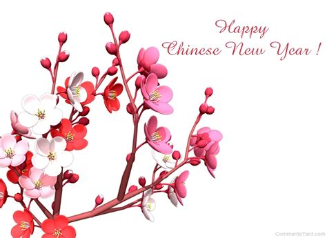 chinese new year comments pictures graphics for facebook