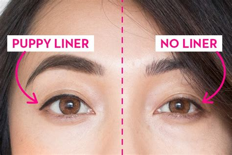puppy eye makeup how to rock the puppy eyeliner trend