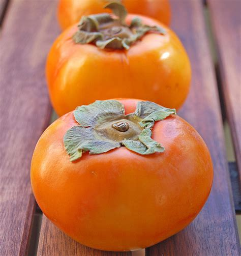 a fruit that looks like a tomato food for thought fruit of the fall persimmon salsa