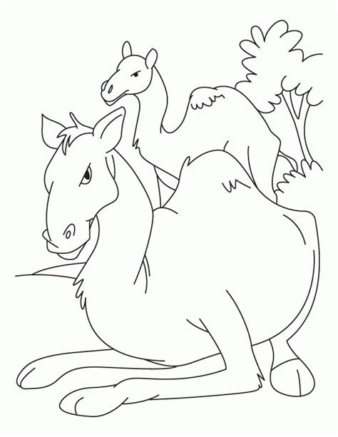 coloring pages of animals with their babies animals and their young colouring pages coloring home