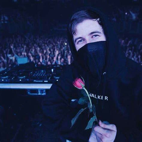 alan walker edm pinterest danndonadio alan walker pinterest alan