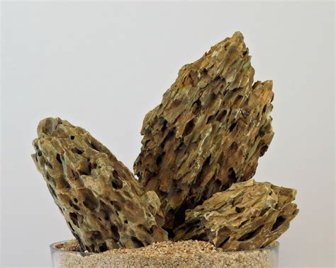 Aquascaping Rocks by Rocks Aqua Rebell