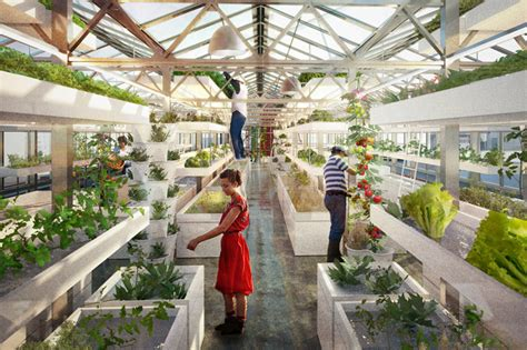 Flat Roof House antonio scarponi combines urban farming with industrial