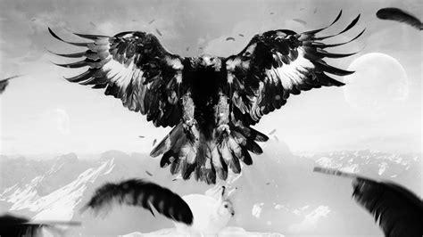 wallpaper black eagle black eagle art wallpaper wallpaper wallpaperlepi