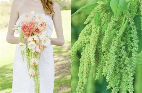 Unique Wedding Flowers by Unique Wedding Flowers To Make Your Bouquet Stand Out