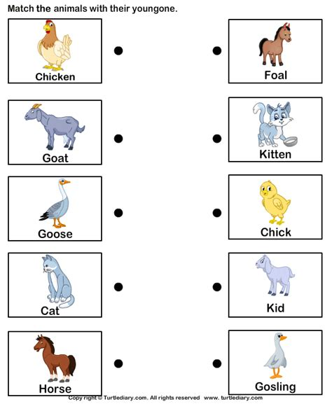 free printable maria montessori simple quiz pdf http pictures of farm animals and their babies worksheet