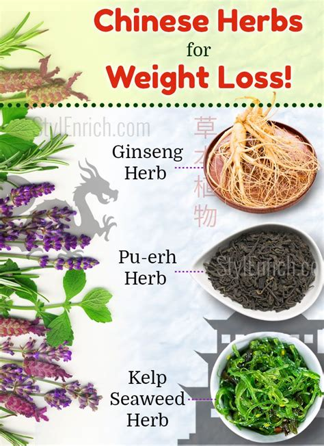 weight loss herbs herbs for weight loss that are just amazing for you