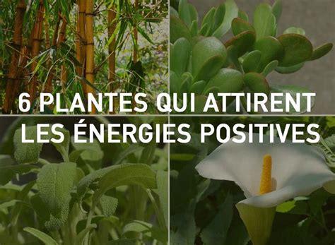 Beau Plantes Depolluantes Pour La Maison #2: 94a28834f55d3f4d0c8f7e414e92fe66.jpg