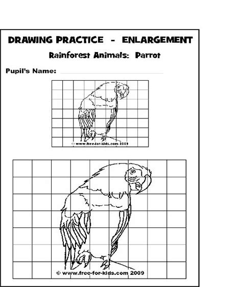 draw to scale free enlargement drawing practice using a grid grid drawings drawing practice