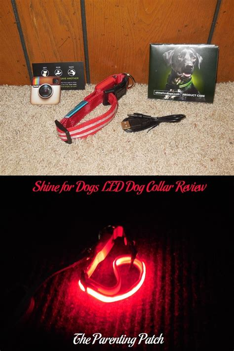 collars reviews shine for dogs led collar review parenting patch
