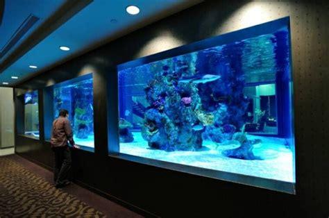 lumino lighting as seen on shark tank home shark tank aquarium acrylic aquariums panels