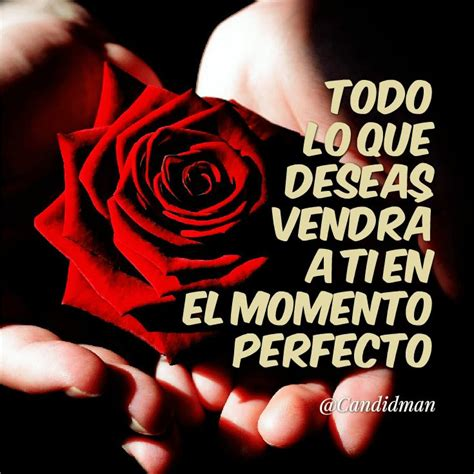 el momento perfecto lo 8416226326 38 best images about frases de fin de semana on tes amor and christmas cards