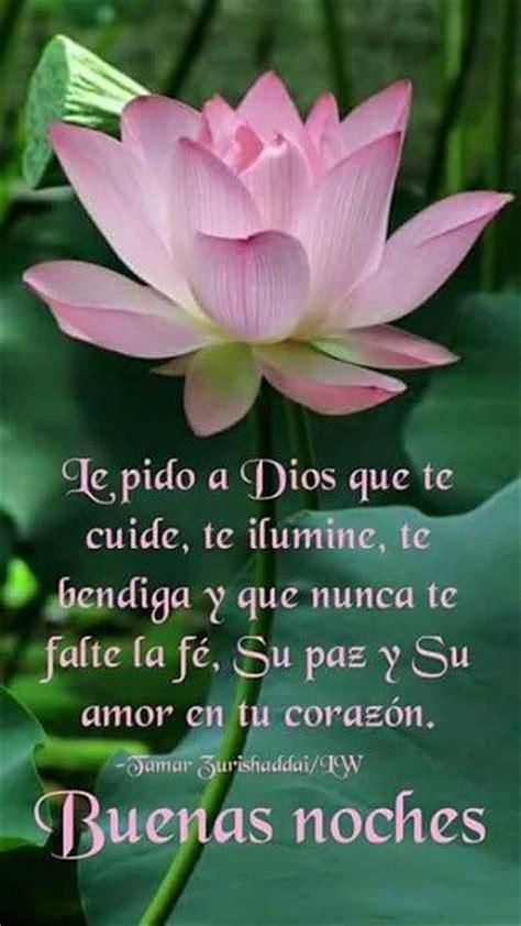 imágenes bonitas de buenas noches con rosas imagen de una bella flor con mensaje para desear buenas