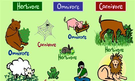 imagenes animales carnivoros herviboros omnivoros somos los de primero abril 2015