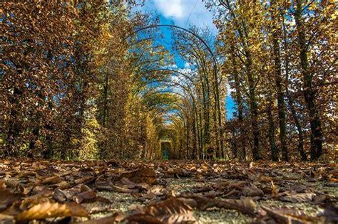 i parchi pi 195 185 belli d italia i 10 finalisti e le immagini