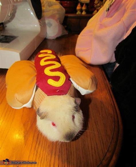 guinea pig hot dog halloween costumes  pets coolest