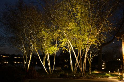 Landscape Up Lighting Outdoor Lighting Ryco Landscaping