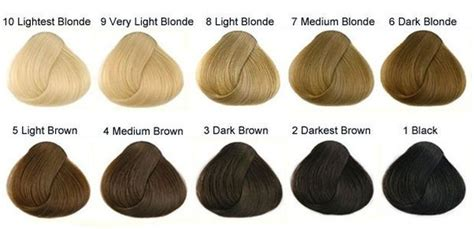 whats the name for hair color light on top and dark underneath what s the difference between strawberry blonde and light