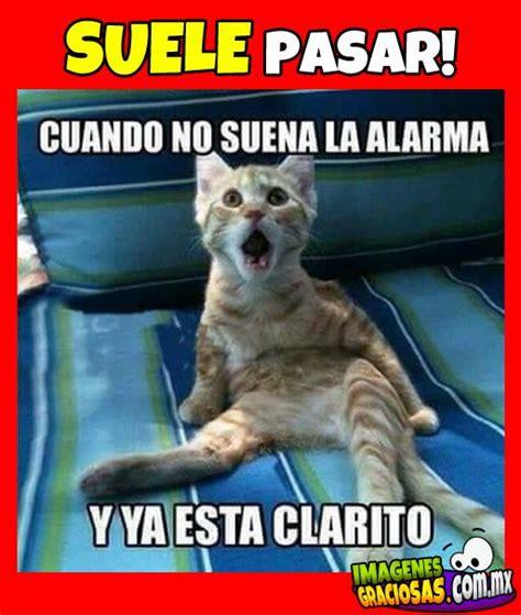 imagenes chistosas mexicanas resultado de imagen para imagenes chistosas emojis