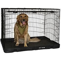 crate training a puppy with another dog in the house how to crate training your dog or puppy love and kisses pet sitting indian trail nc