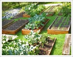 Box Garden Layout Buckhead Raised Beds Home