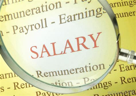 what is the difference between salary and remuneration