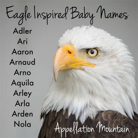 names for a name help honoring arnold appellation mountain