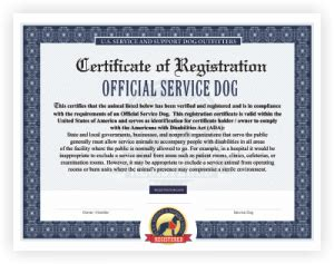 Doctor Prescription Letter Emotional Support Dog Service Dog Vest And Id Card Kits Service Animal Certificate Template