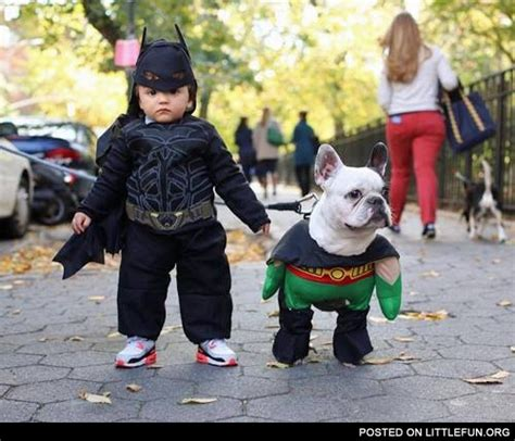 littlefun a kid and a dog in batman and robin costumes