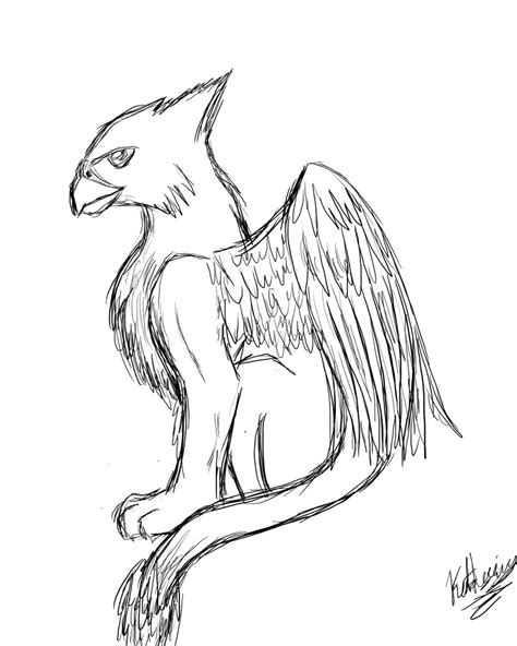 how to draw doodle creatures griffon griffon pencil and in color griffon
