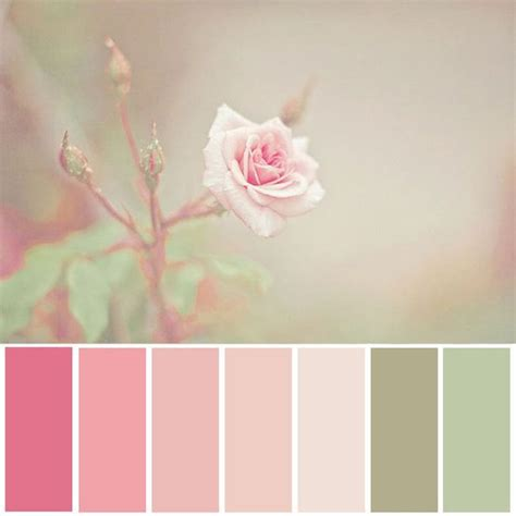 colors that go with pink 25 best ideas about pink color schemes on pinterest