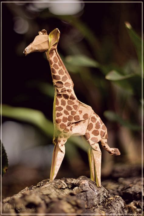 How To Make Giraffe With Paper - origami giraffe by foldedwilderness on deviantart