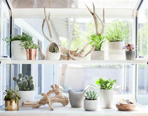 Windowsill Plant Shelf by Plants Just Lovin These Ideas Design Lovin