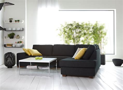 simple living room unique decoration simple living room plants decosee com