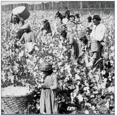 Southern Planters Considered Their Slaves To Be by Robber Barons The Elitist