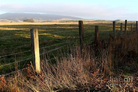 Landscape Photography Bay Area Fence And Landscape At Point Reyes California 7d9968