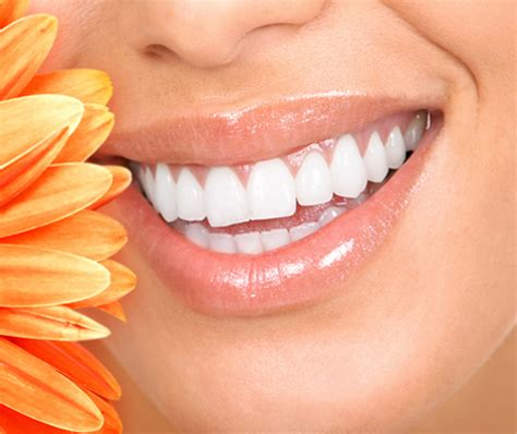 comfort dental plano reviews miranda lacy dds