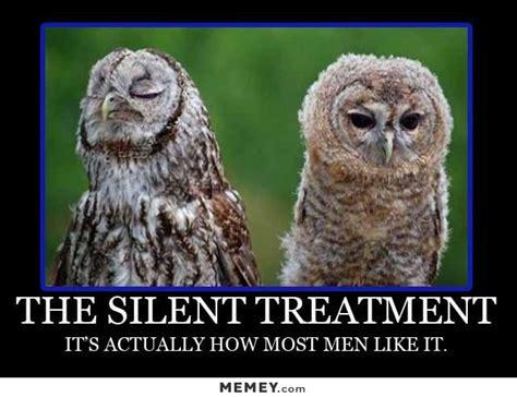 Funny Owl Meme - owl memes funny owl pictures memey com