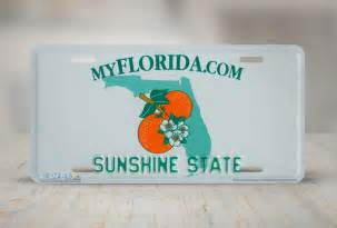 550 florida state license plate vanity license plate ebay
