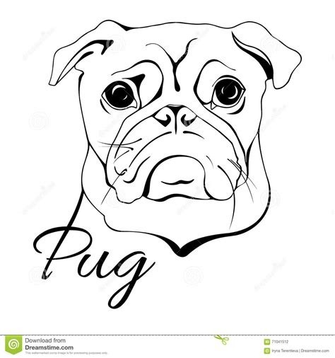 Pug Outline by Pug Sketch Drawings Easy Sketch Coloring Page