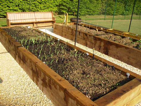 raised veg beds steel fruit cage raised vegetable beds irrigation and
