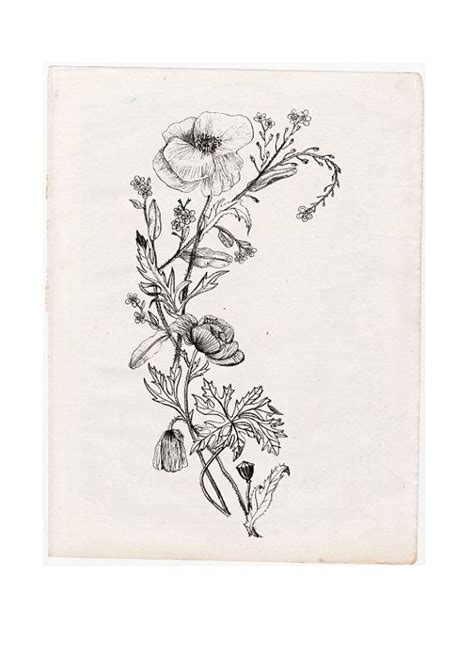 wild flower tattoo designs black and white wildflower search ink
