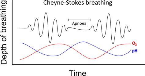 breathing pattern video natalies casebook tag