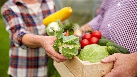 wann am besten sommerreifen kaufen wann wird am besten gepflanzt quelle