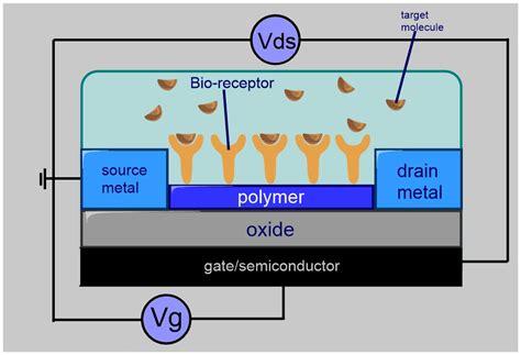 transistor fet wiki bio fet