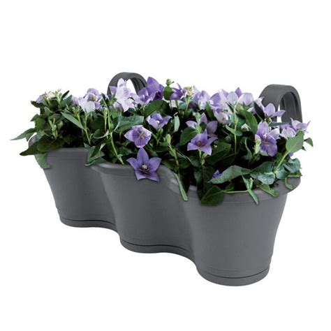 Balcony Planters Uk by Buy Hanging Balcony Planter The Worm That Turned
