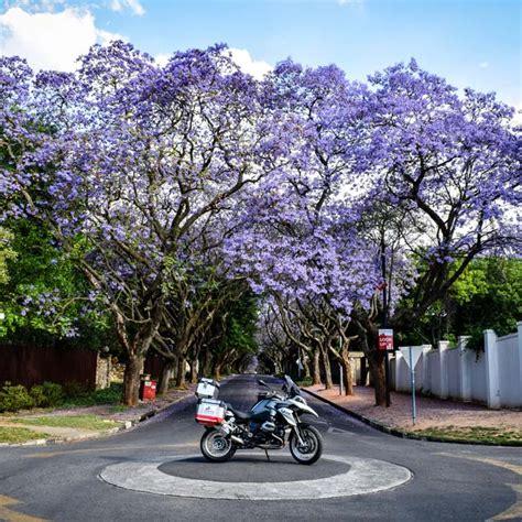 Edelweiss Motorrad by Edelweiss Bike Travel Traumhafte Motorradtouren