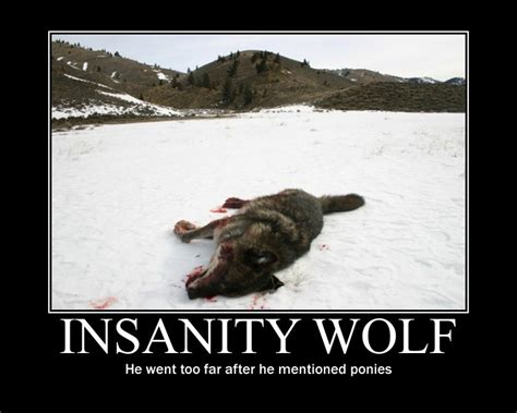 Insanity Meme - image 232150 insanity wolf know your meme