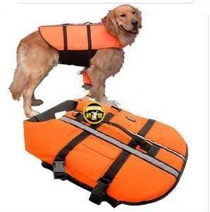 puppy bathing suits swimwear wholesale swimwear cheap swimwear petsoo
