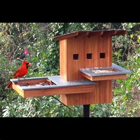 Bird House Spa And Resort Woodworking Plan By Tobacco Road Cardinal Bird House Plans